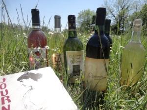 winefestival