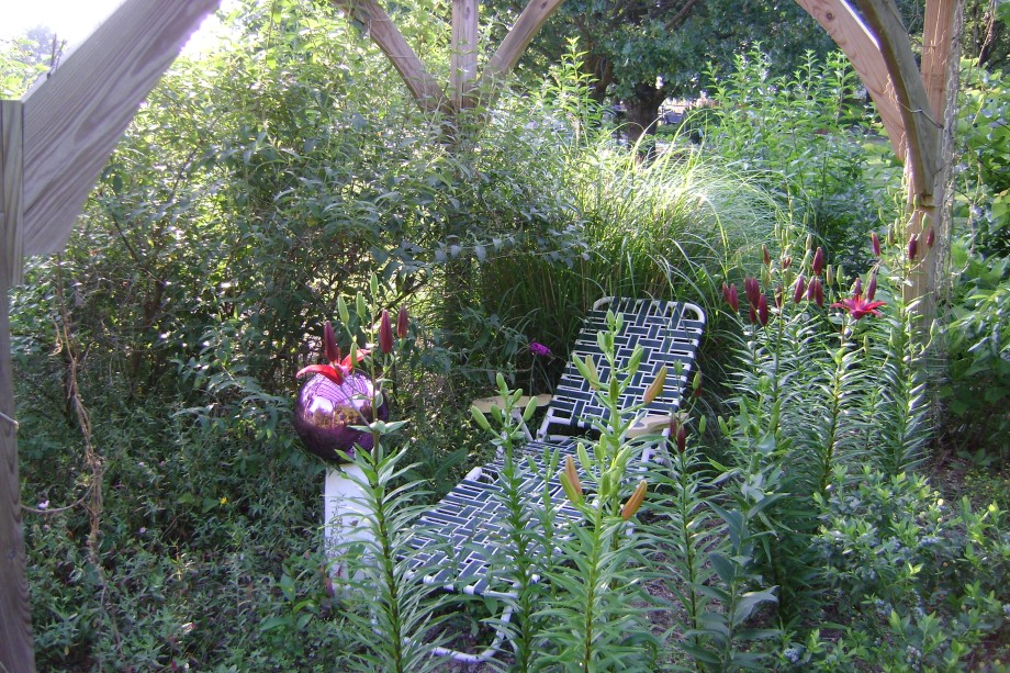 Garden5-31-10 004