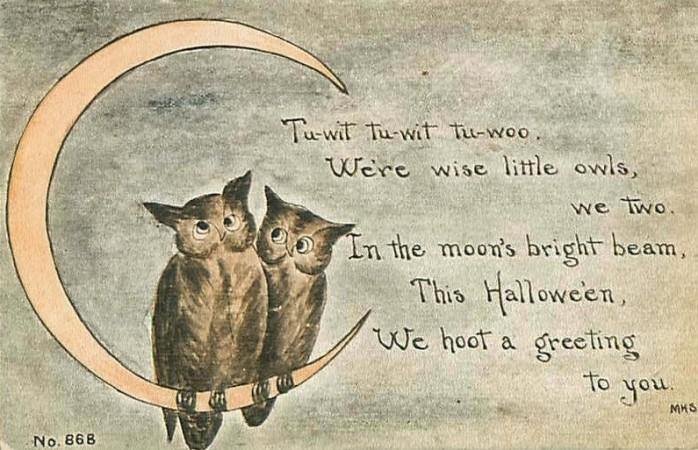 Halloween owl limerick.JPG